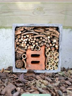 Make an insect hotel Bug Hotel, Bird House Feeder, Mason Bees, Garden Animals, Home Landscaping, Growing Herbs, Green Life, Nature Crafts, Fauna