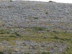 fields of stone