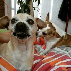 Una sonrisa
