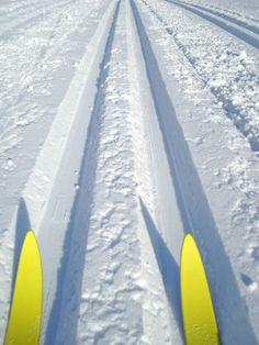 Cross country #CdnGetaway #skiing #adventure