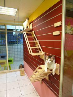 Catswall – A Modular Cat Climbing Wall Perfect for You Pet. Cat stairs! #cats #CatStairs #CatClimbs