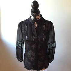 Diane Von Firstenberg sheer silk blouse Beautiful sheer 100% silk DVF blouse. Never worn new with tags. Lace detail on 3/4 sleeves and chest. Great for work or a date night! Diane von Furstenberg Tops Blouses