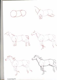 How-To-Draw-Horses ... www.frihetensarv.no, #frihetensarv, diy, Joy, Tegning, Drawing, Horses, Hester