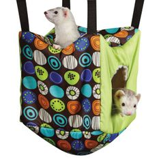 All Living Things® Ferret Cube $ 14.99 visit http://www.shopandsavedeals.net/pet-toys.html