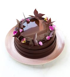 Entremet Tiramisù - In Love With Cake Chocolate Granola, Chocolate Hazelnut, Food Cakes, Beautiful Cakes, Amazing Cakes, Chocolates, Chocolate Cake Designs, Chocolate Cake Photos, Chocolate Decorations
