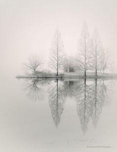 Landschaft Fotografie Monochrom Natur Nebel von NicholasBellPhoto