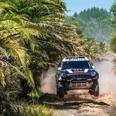 A modified #MINI #Countryman in one of its many natural habitats: the jungle.