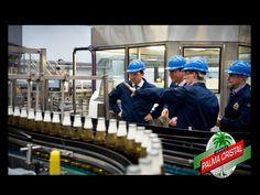 CERVEZA PALMA CRISTAL ¿Qué empresa hará una millonaria inversión única en décadas? Molson Coors UK invertirá otros 28 millones de libras en su Cervecería de Burton haciendo un total de 75 millones de libras. Esta es una de las mayores inversiones de capital individual de la British Brewing durante décadas. www.cervezasdecuba.com