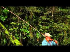 ▶ Fly Casting, The TUCK CAST - YouTube