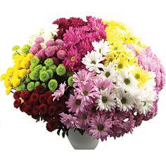 Αποτέλεσμα εικόνας για λουλούδια για γάμο οκτώβρη Χρυσάνθεμα
