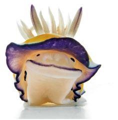 Purple, yellow and white 'smiling' Nudibrach
