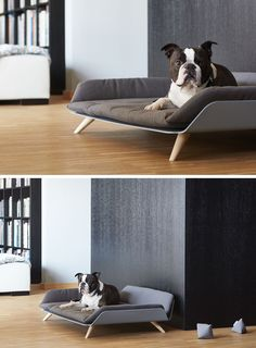 Designer Gerd Couckhuy has created the Letto dayBed, a stylish and modern dog bed made with an aluminum frame, light wood legs and a soft comfortable pillow. - The Letto dayBed Is A Modern Dog Bed With Plenty Of Style Cãezinhos Bulldog, Pallet Dog Beds, Diy Dog Bed, Wood Dog Bed, Dog Furniture, Dog Rooms, Dog Crate, Pet Beds, Dog Houses