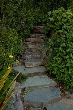 San Anselmo Hillside - traditional - Landscape - San Francisco - Pedersen Associates
