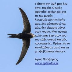 Greek Quotes, Wise Words, Word Of Wisdom, Famous Quotes