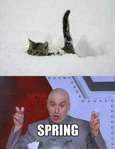 """So called, """"Spring"""". Hahaha, if your from Idaho..spring should always be said this way."""