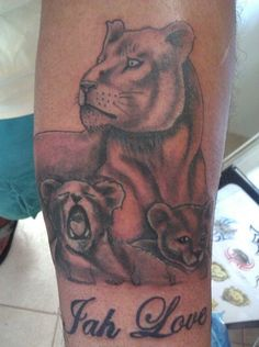 mother lion with cubs tattoo - Google Search