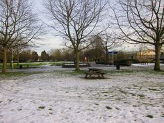 Winter at Central Park, Chelmsford England