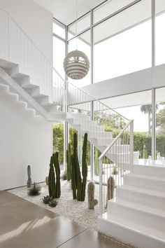 Hallway and Concrete Floor The Poul Henningsen pendant lights the stairwell. A cactus garden runs the length of the front yard and extends into the house. indoor 7 Key Tips For Owning Cacti, According to a Cactus Expert Home Stairs Design, House Design, Indoor Cactus Garden, Balcony Gardening, Cacti Garden, Indoor Gardening, Garden Landscaping, House Stairs, Garden Stairs