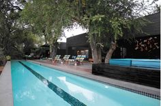 Lap Pool with Jackal Berry Tree Somerset West, Game Lodge, Beach Road, Architect Design, Berry, Safari, Cottage, Outdoor Decor, Home