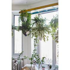 18'' Spider plant - Décors Véronneau Spider Plants, Green Plants, Artificial Plants, Houseplants, Decoration, Decor, Fake Plants, Faux Plants, Artificial Indoor Plants