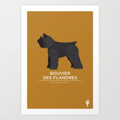 bouvier Art Print by bethany ng - $15.00
