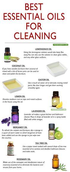 Love my oils