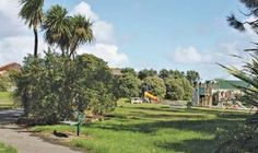 Luckens Reserve, West Auckland, NZ. Located opposite the school in Marina View Rd, West Harbour. Waipareira walkway .