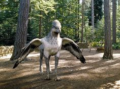 A hippogriff is a mythical creature that is supposedly the offspring of a Griffin and a mare.