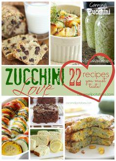 Zucchini Love: 22 re