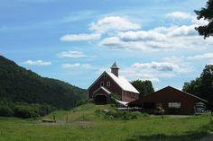 Liberty Hill Farm - Rochester