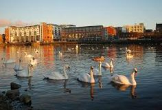 Image result for Limerick city Limerick City, King John, City Museum, Walking Tour, Tour Guide, Tourism, Castle, Old Things, Image