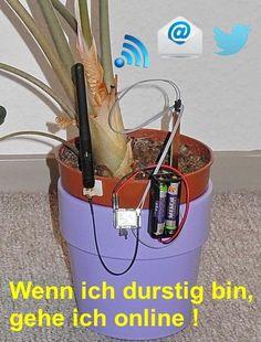 WiFi Bodenfeuchtesensor E-Mail Gießerinnerung per WLAN . Netzwerk, Bodenfeuchtigkeit, Gießerinnerung, Gießalarm, Pflanzenbewässerung,