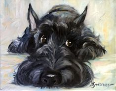"Terriers PRINT Scottish Terrier Scottie Dog ""Mischief"" brindle black scotty puppy/ Mary Sparrow unstretched a - Highlands Terrier, West Highland Terrier, Highlands Nc, Schnauzer Gigante, Schnauzer Art, Dog Paintings, Art Graphique, Terrier Dogs, Bull Terriers"