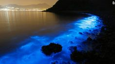 The stunning photo shows a shimmering blue shoreline with the bright lights of  Hong Kong in the distance.
