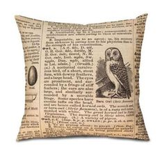 Oso and Bean 013Pi05-dic01 Dictionary Owl Pillow Cover