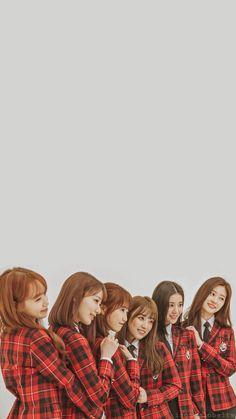 Rose Wallpaper, Wallpaper Lockscreen, Wallpapers, Wallpaper Ideas, Sakura Miyawaki, Yu Jin, Kim Min, Lock Screen Wallpaper, Korean Girl Groups