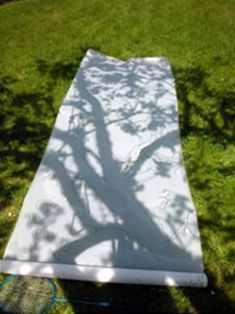 Shadow play is an extension on light investigations that is encouraged in Reggio Emilia. This shadow of a tree is exploring the natural world
