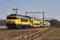 ns-visual identity-trains
