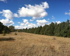 Vacant Land for Sale | LandLeader | Schuler Income Opportunity