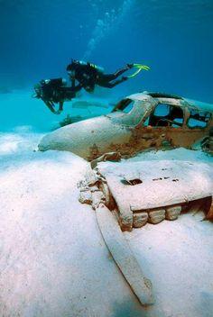 We Got Free Rain - Abandoned underwater plane. Rusting in peace.