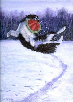 """Sammy's Frisbee Jump"" - a border collie executing a high jump for a Frisbee - an original painting by North Carolina artist, Fran Brooks. www.artistnannie.com"