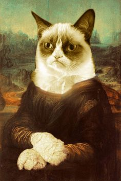 Grumpy Cat Mona Lisa on Stretched Canvas by RubinoFineArt