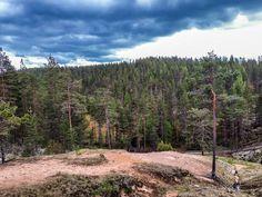 """151 tykkäystä, 5 kommenttia - Heikki (@heikki_hautala) Instagramissa: """"#nationalpark #geopark #rokua #finland #utajärvi #vaala #syvyydenkaivo #ig_finland #discoverfinland…"""" Finland, Country Roads, Nature, Instagram, National Forest, Naturaleza, Scenery"""