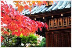 京都。紅葉: 叡山電鐵沿線散步路線-地區-欣旅遊