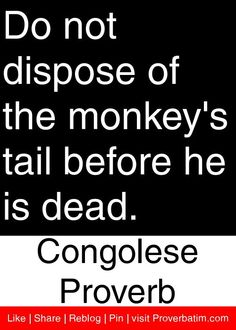 Do not dispose of the monkey's tail before he is dead. - Congolese Proverb #proverbs #quotes