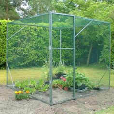 Norfolk Greenhouses Ultimate Fruit Cage | Thompson & Morgan