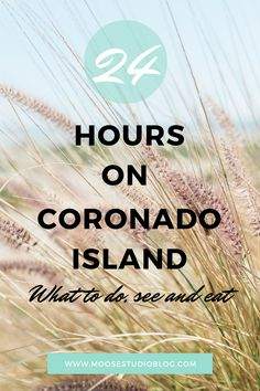 Coronado Island is a hidden gem located just South of Downtown San Diego. See what we did, saw and ate during our visit there!