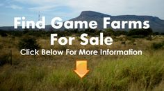 Game Farms For Sale Limpopo