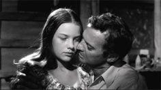 Photo du film Luis Buñuel - Le journal d'une femme de chambre + Cet obscur objet du désir + La jeune fille - 102956