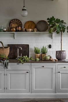 Why is Scandinavian kitchen design so popular? To begin with, homeowners are exempt .Why is Scandinavian kitchen design so popular? For starters, homeowners free their kitchens from excess material to maximize functionality. In traditional Scandinavian Scandinavian Kitchen, Interior, Scandinavian Kitchen Design, Kitchen Decor, Open Plan Kitchen, Harvest Kitchen, Home Kitchens, Minimalist Kitchen, Kitchen Design